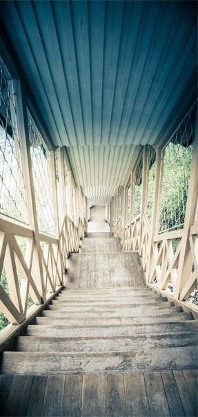 Fototapeta na drzwi   Zabytkowe drewniane schody 3