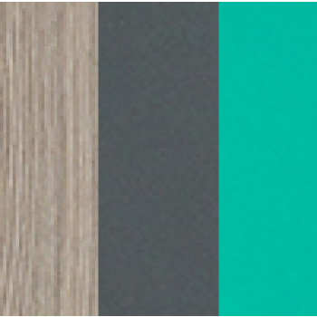 Jesion coimbra ciemny/grafit/zieleń